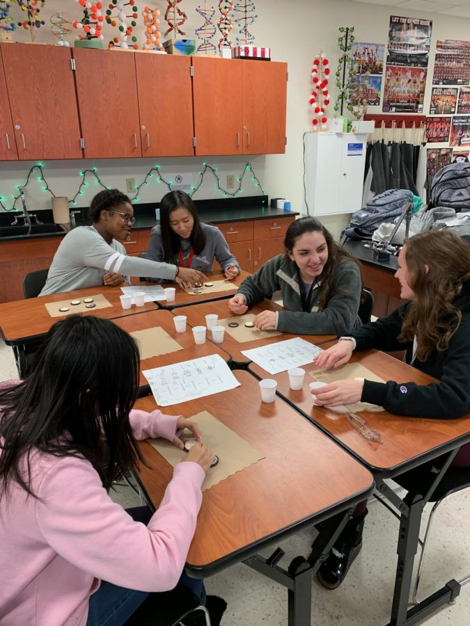 Cell Cycle with Oreos! Freshman Students, Alina Weng, Abi Carroll, Karly Merriott, Janet Kim, and Alyssa Brewer, from Mrs. Holley's class demonstrate the parts of the cell cycle using sprinkles and oreos.