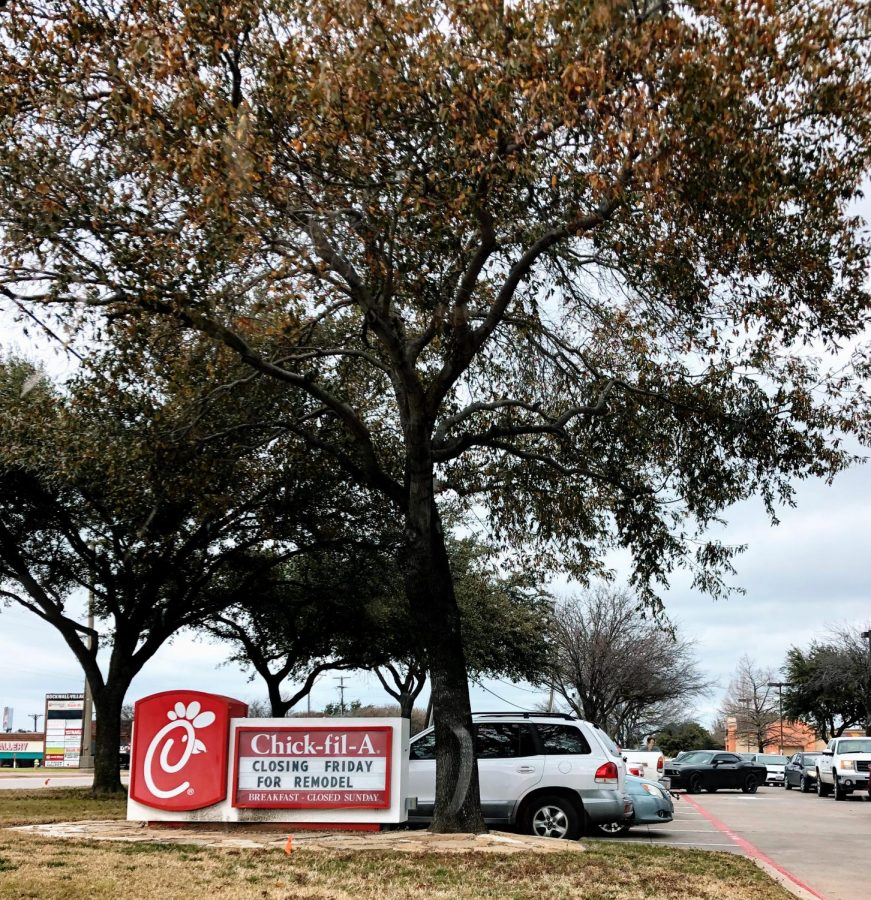 Why+the+cow+didn%E2%80%99t+cross+the+road+%2F%2F+Many+students+choose+Chick-Fil-A+over+other+options+in+Rockwall%2C+and+it%E2%80%99s+been+voted+Rockwall%E2%80%99s+favorite+Fast-Food+Establishment+in+the+Blue+Ribbon+News+2+years+in+a+row.+%E2%80%9CI+usually+go+to+Chick-Fil-A+four+to+six+times+a+week%2C%E2%80%9D+said+Sarah+Fields.